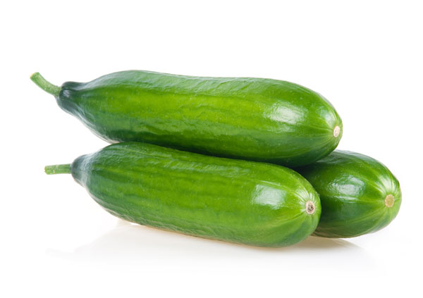 Courgettes in juni